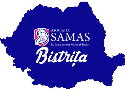 harta_romania_bistrita